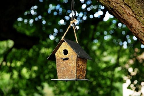 CLIMAQUA-Boutique-Birdhouse-M-6017-mood 2-72x-srgb
